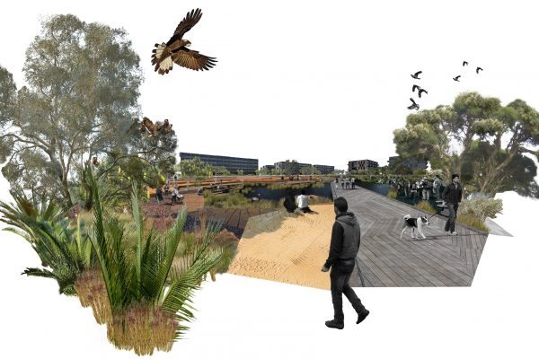 Syrinx Environmental - Projects - Greater Curtin Living Knowledge Stream