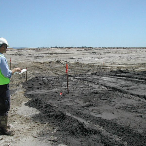 Syrinx Environmental - Projects - BHP Beenup