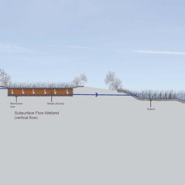 Syrinx Environmental - Projects - Lake Bolac